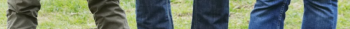 fifth horizontal image slice