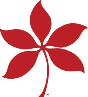 Scarlet Buckeye Leaf